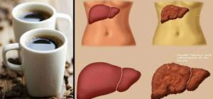 როგორ მოქმედებს ორგანიზმზე დღეში ორი ჭიქა ყავა, მნიშვნელოვანი ინფორმაცია