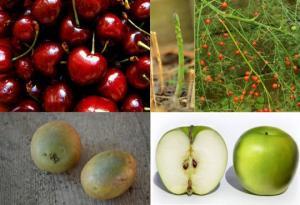 მომაკვდინებელი შხამების (მათ შორის, ციანიდს) შემცველი  საკვები პროდუქტები