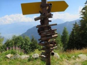 ჭკვიანი მაჩვენებელი შვეიცარიის მთებიდან