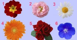 ერთწუთიანი ტესტი, აირჩიე ყვავილი და გავიგებთ შენი ქალური საიდუმლოს შესახებ