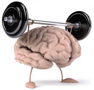 რომელი საკვები ნივთიერებები და ვიტამინები უწყობს ხელს ტვინის აქტიურ მუშაობას?