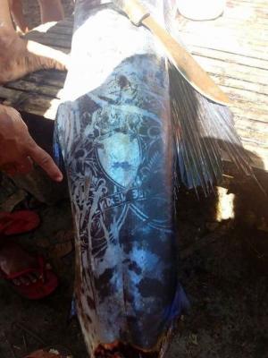 ფილიპინებში დაიჭირეს თევზი, რომელიც ტატუირებული გეგონებათ ისე გამოიყურება
