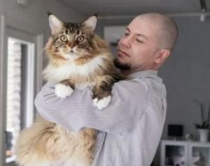 მსოფლიოში ყველაზე დიდი კატა ფინეთში ცხოვრობს