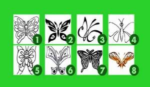 ტესტი «აირჩიეთ პეპელა» და  გაიგეთ რას მალავს თქვენი ქვეცნობიერი?!