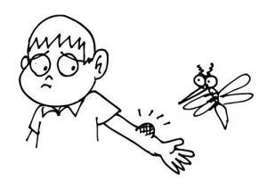 რამდენიმე მარტივი და ეფექტური რჩევა, თუ როგორ დავიცვათ თავი კოღოების შემოტევისაგან