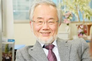 იაპონელმა მეცნიერმა დაამტკიცა, რომ შიმშილი აჯანსაღებს ორგანიზმს და ამისთვის ნობელის პრემიაც მოიპოვა!