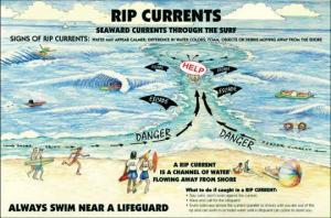 ფრთხილად, სახიფათოა!!! ეს ყველამ უნდა იცოდეს, ვინც დასვენებას ზღვაზე აპირებს