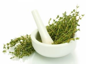 ყველაზე ძლიერი მცენარე, რომელიც ანადგურებს სტრეპტოკოკს, ჰერპესს, კანდიდოზს და გრიპის ვირუსს!