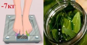 დაფნის ფოთოლი წონაში კლებისთვის, საოცრად ეფექტური სასმელი