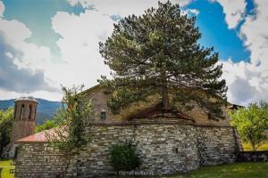 ეკლესიაში გაზრდილმა 100 წლის ხემ სოფელი ტურისტებისთვის სასურველ ადგილად აქცია