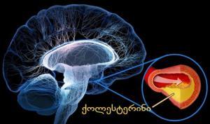 თავის ტვინის სისხლძარღვების გაწმენდა მარტივად (5  მეთოდი)