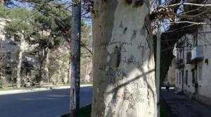 ქუჩის პოეზია -  როცა სადღაც მიდიხარ და მოულოდნელად დამაფიქრებელ წარწერებს აღმოაჩენ