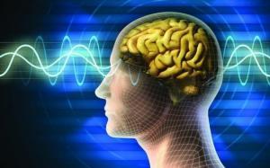 5 მოქმედება, რომელიც ტვინის უჯრედებს აღადგენს