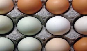 რატომ არ უნდა შეინახოთ მაცივარში კვერცხი, ეს ყველამ უნდა იცოდეს
