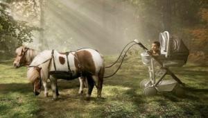 ბავშვის თვალით დანახული სამყარო