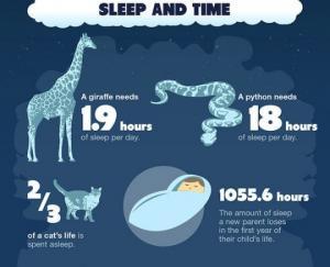 საინტერესო ფაქტები სიზმრებზე და ძილზე