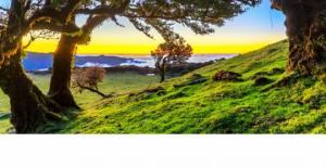 მადეირა- ატლანტიკის ოკეანეში დაკარგული, განსაცვიფრებელი პატარა კუნძული