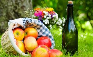 როგორ მოვამზადოთ ვაშლის ღვინო სახლის პირობებში - ხილის ღვინის ისტორია