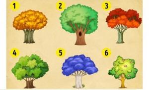 აირჩიეთ ხე და გაიგეთ რას უნდა ელოდოთ ახალ წელს! რას გიმზადებთ 2018?!