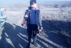 დაურეგისტრირებელი იარაღით უკანონო ნადირობის ფაქტი დედოფლისწყაროში
