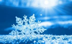 სანქტ-პეტერბურგში ცისფრად  თოვს
