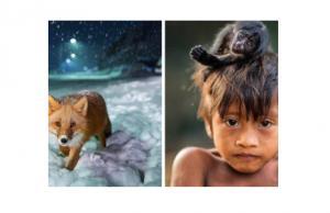 National Geographic-მა 2017 წლის საუკეთესო ფოტოები გამოავლინა