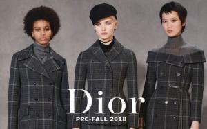Christian Dior-ის შემოდგომა-ზამთარი 2018/2019