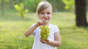 რა ასაკიდან უნდა ჭამოს ბავშვმა ყურძენი - რჩევები მშობლებს