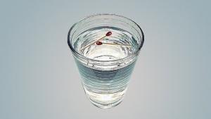 გაიგეთ გაქვთ თუ არა ჯადო-მხოლოდ წყლისა და ასანთის დახმარებით