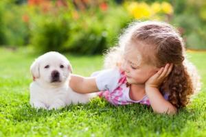 რომელ ქვეყანაში სჩუქნიან ძაღლებს ვალენტინობის დღეს  საჩუქარს?