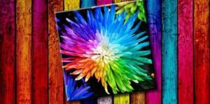 ფერების ტესტი, რომელიც თქვენს ფსიქოლოგიურ ასაკს გამოავლენს