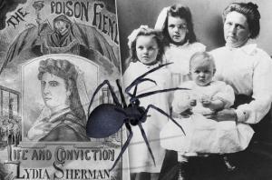 შავი ქვრივები: 4 ქალის შემზარავი ისტორია
