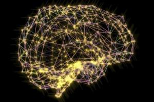 დონალდ ოლდინგ ჰები და მისი მიღწევები ფსიქოლოგიაში