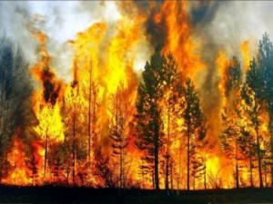 სტიქია, რომელიც ადამიანმა უხსოვარი დროიდან მოათვინიერა - საინტერესო ფაქტები ცეცხლის შესახებ
