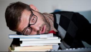 რა ეწოდება ადამიანს, რომლის ტვინიც ღამით აქტიურდება სწავლისთვის, დღისით კი სულ ძინავს