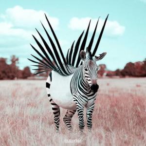 ფრანგმა მხატვარმა ფოტოშოპის გამოყენებით საუცხოო ცხოველები შექმნა - ეს უნდა ნახოთ