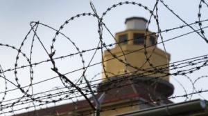 საქართველოს პრეზიდენტი 64 პატიმარს შეიწყალებს