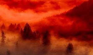 წითელი ნისლი - რა არის და საიდან ჩნდება ის?