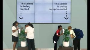 გამაოგნებელი შედეგი:IKEA -მ სთხოვა სკოლის მოწაფეებს მცენარესთვის ეგინებინათ(ვიდეო)