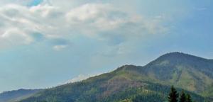 ბორჯომი ხანძრის შემდეგ  და  მთა, რომელიც გაზაფხულს  სიმწვანის გერეშე ხვდება