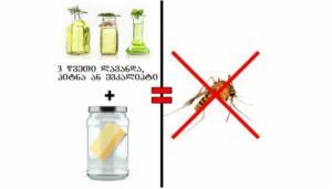 როგორ მოვაშოროთ სახლიდან კოღო! - ყველაზე უსაფრთხო მეთოდი
