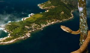 გველების კუნძული