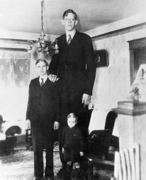 რობერტ უოდლოუ ყველაზე მაღალი ადამიანი მსოფლიოში