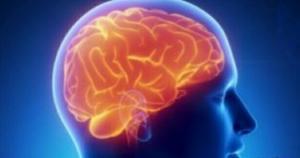 განსხვავება ქალის და მამაკაცის თავის ტვინში