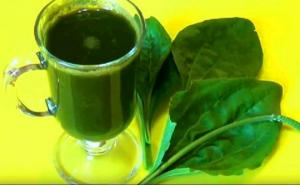 მცენარე, რომელსაც შეუძლია  ჩვენი ორგანიზმი 10 დაავადებისგან განკურნოს