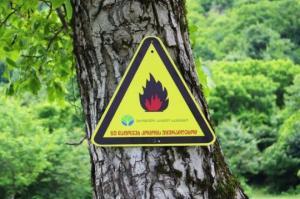 ეროვნული სატყეო სააგენტო ტყეში კოცონის დანთებასთან დაკავშირებით მოსახლეობას აფრთხილებს