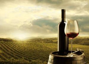 ეძებ საჩუქრად საუკეთესო ქართულ ღვინოს? – 10 რჩეული ღვინო, რომელიც მალე საქართველოს სავიზიტო ბარათი გახდება