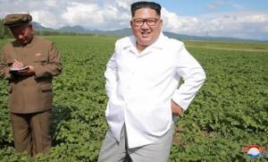 მიზეზი გაგაოცებთ - რატომ არ შეხვდა ჩრდილოეთ კორეის ლიდერი, აშშ-ს საგარეო საქმეთა მინისტრს?