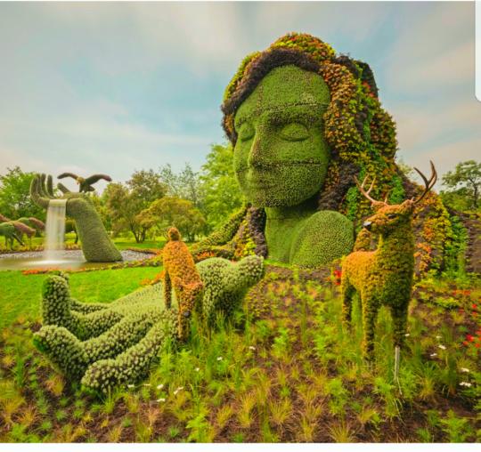 მონრეალის ბოტანიკური ბაღი