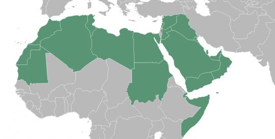 არაბული სამყაროს ქართველი მმართველები